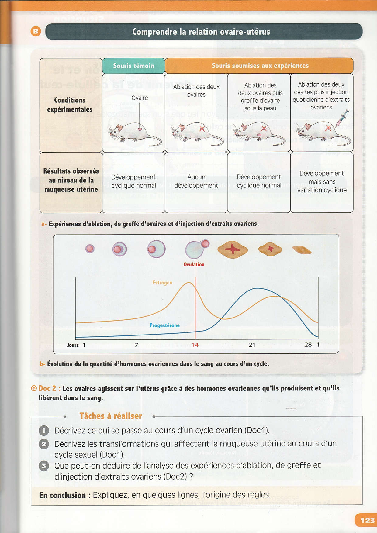 What Is Svt >> La reproduction humaine - Cours (Manuel) - AlloSchool